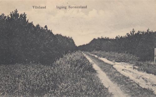 Bomeland-1