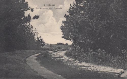 Bomeland-10