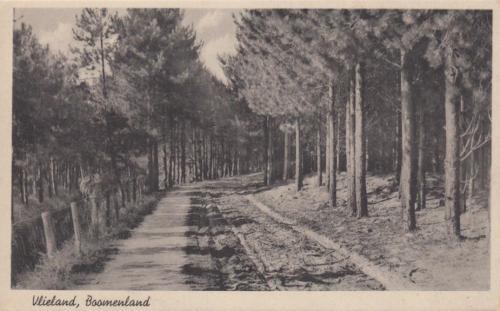 Bomeland-7