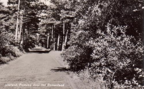 Bomeland-8