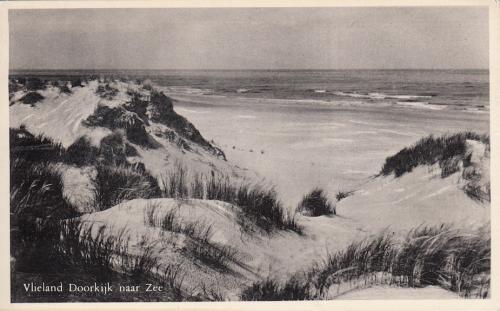 Duin  Zee-15