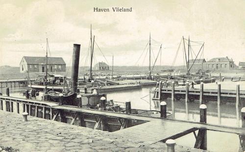 Haven-7