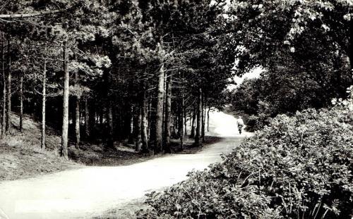 Kampweg-2
