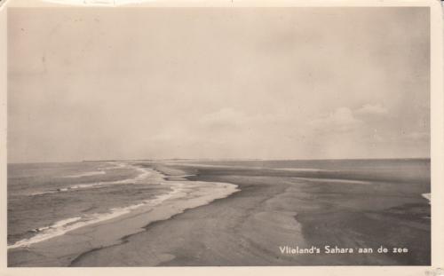 Strand-14